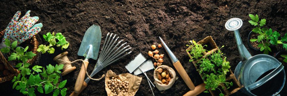 yard work, gardening, outdoors